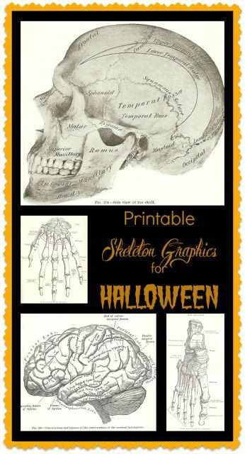 Halloween skeleton graphics free printables from Knick of Time | www.knickoftime.net