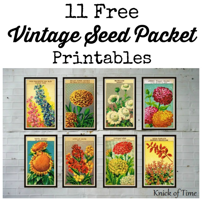 photograph relating to Printable Seed Packets identify Antique Farmhouse Seed Packet Prints Knick of Season