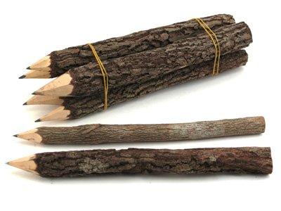 Wooden twig pencils