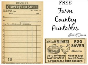 Antique Graphics Wednesday – Farm Store Receipt & Egg Saver Advertisement
