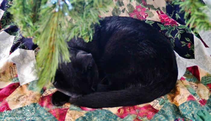 Cat under the Christmas Tree via Knick of Time | knickoftime.net