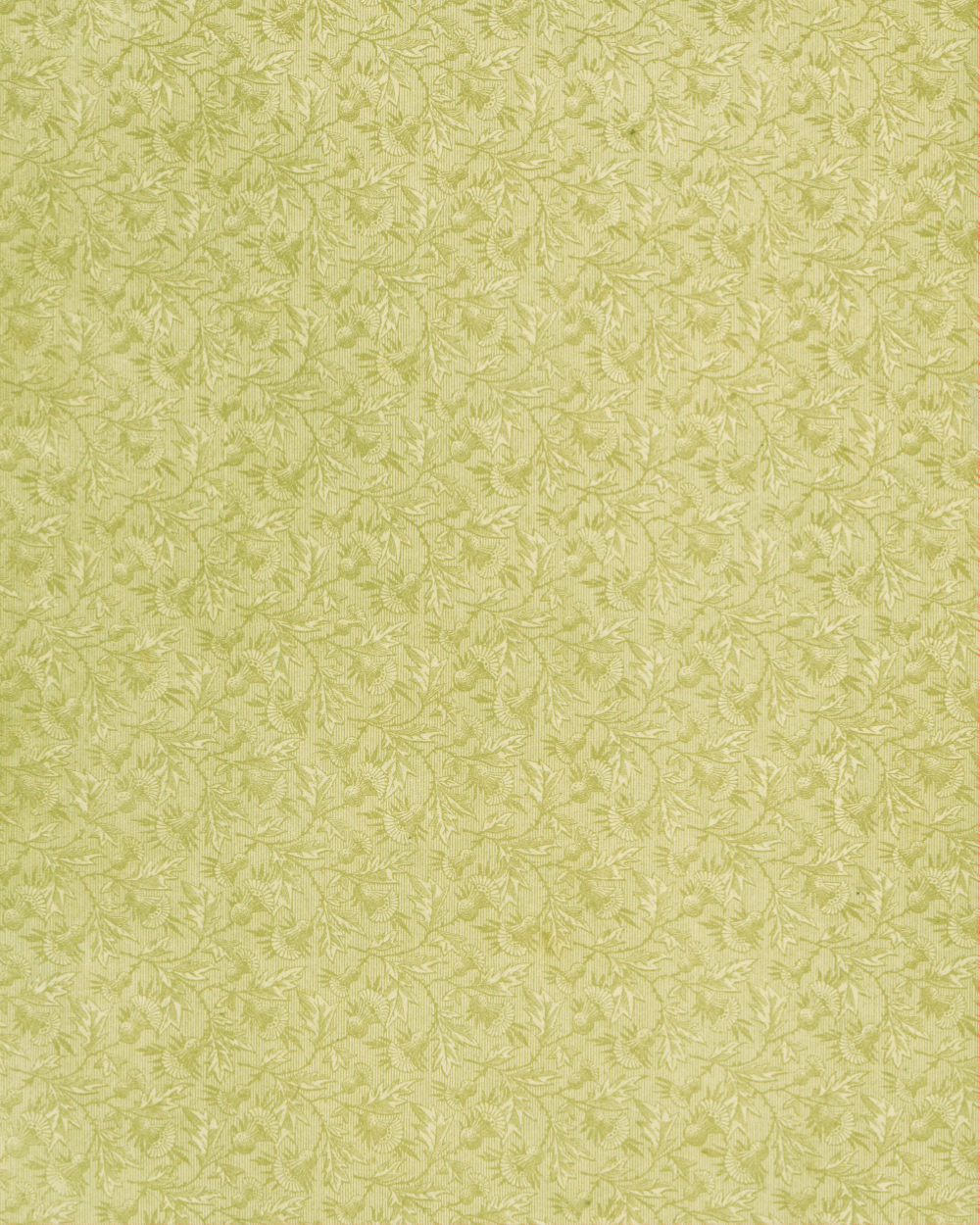Floral Paper Green