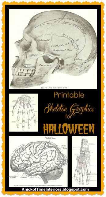 Halloween skeleton graphics