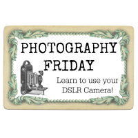 Photography Friday – ISO camera setting