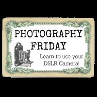 Photography Friday – ISO camera setting