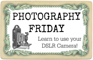 How to Use Your DSLR Camera Photography Friday Series
