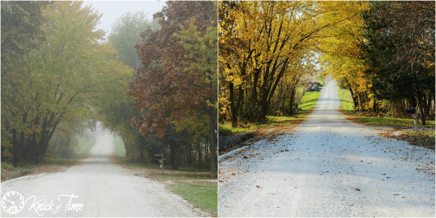 Country Road in the Autumn