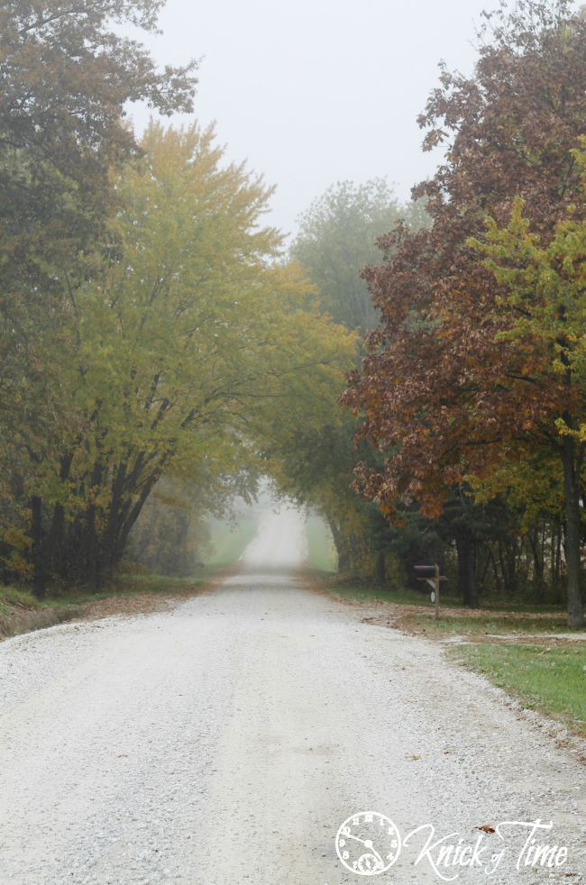 Country Road on a Foggy Autumn Morning