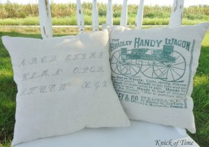 Antique Graphic Pillows