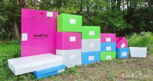 GIVEAWAY – Packaways Reusable Plastic Storage Boxes {3 Winners!}