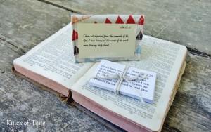 GIVEAWAY – Treasured Word Scripture Packs