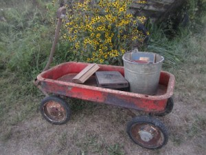 Chippy Little Red Wagon