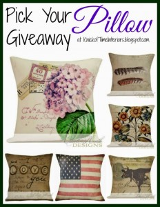 Pick Your Pillow Giveaway