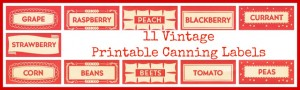 Antique Graphics Wednesday – 11 Vintage Red Canning Labels