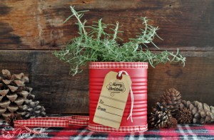 Festive Tin Can Gift – 12 Days of Christmas {Day 10}