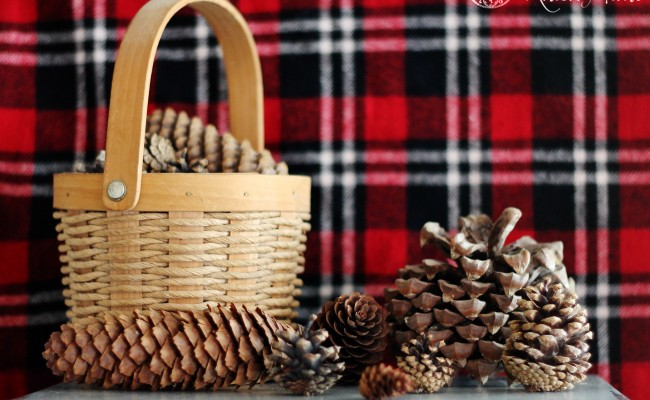 Pine Cones – Nature's Christmas Decoration