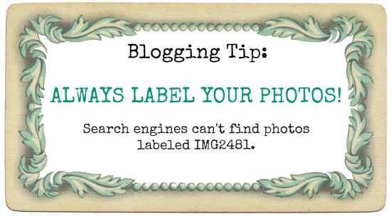 Search Engine tip label photos