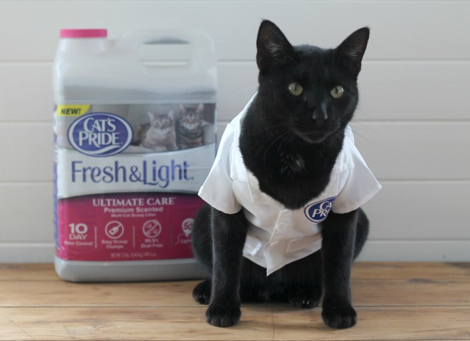 Cat's Pride Fresh and Light Ultimate Care