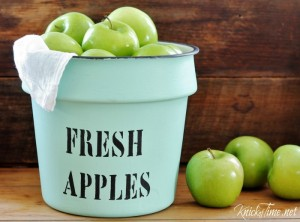 Fresh Apples for an Enamelware Pot