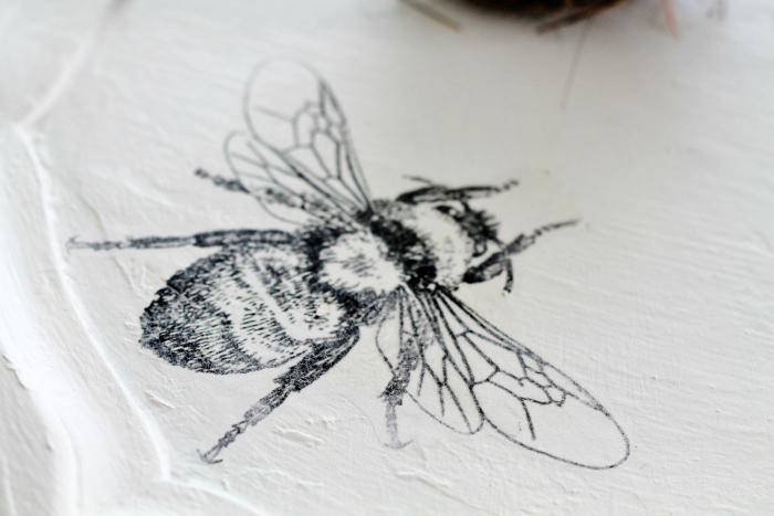 bee image transfer