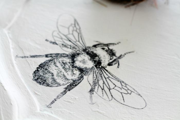 bee image transfer