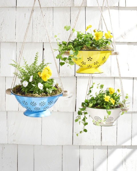 colander hanging planters