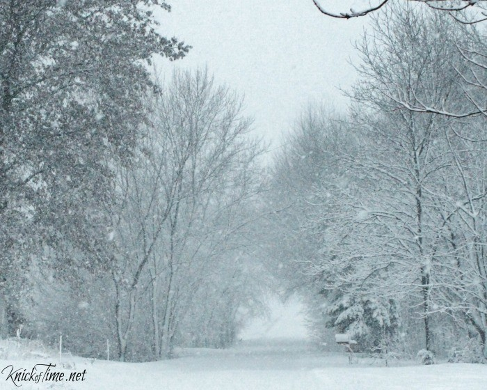 winter scenery country road
