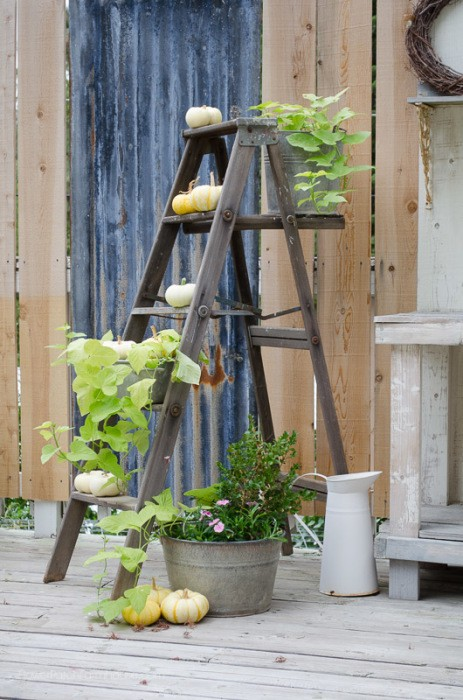 farmhouse ladder plant stand