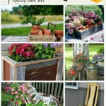 garden projects and decor
