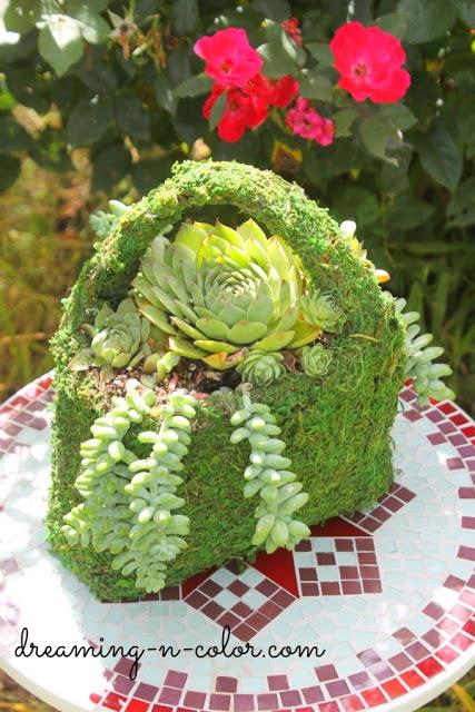 succulent planterpurse