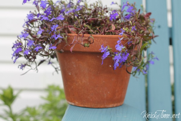 upcycled a flower pot