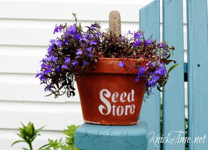 terra cotta flower clay pot