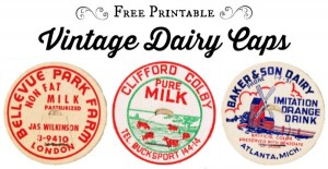 Vintage Dairy Bottle Caps
