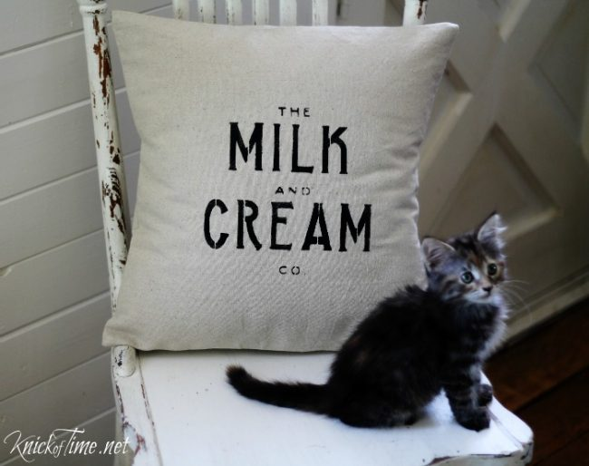 Stenciled drop cloth Milk and Cream Co. pillow and baby kitten | www.knickoftime.net
