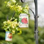 hanging tin can planter