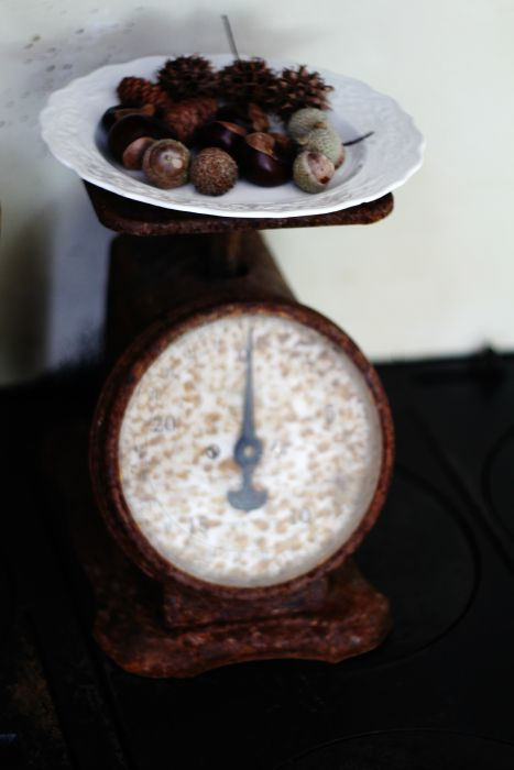 antique scale acorns, buckeyes - KnickofTime.net