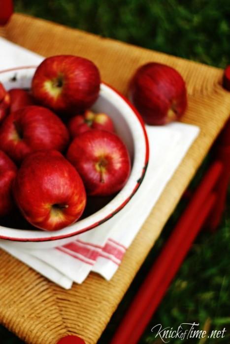 red grain sack stripe towel - KnickofTime.net