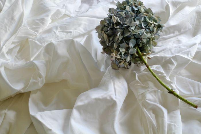 comfy bed sheets