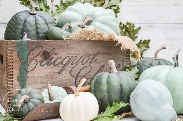 chalk painted pumpkins autumn decor