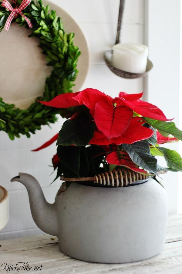 Poinsettia in a rusty kitchen kettle - KnickofTime.net