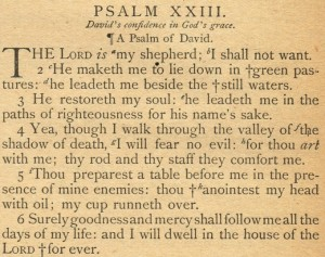 Psalm 23 Goodness and Mercy