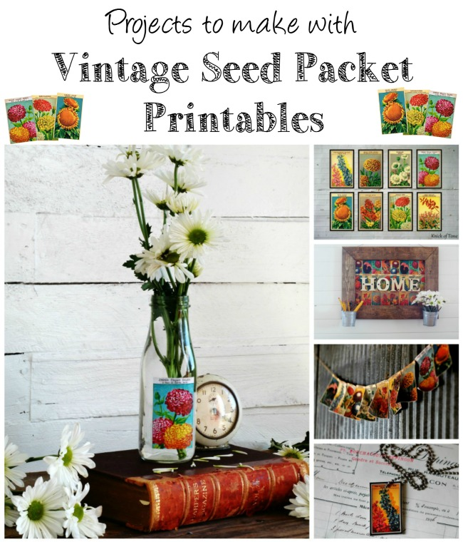 seed packet projects pinnable