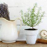 Update a Thrift Shop Flower Pot + Failed Plans