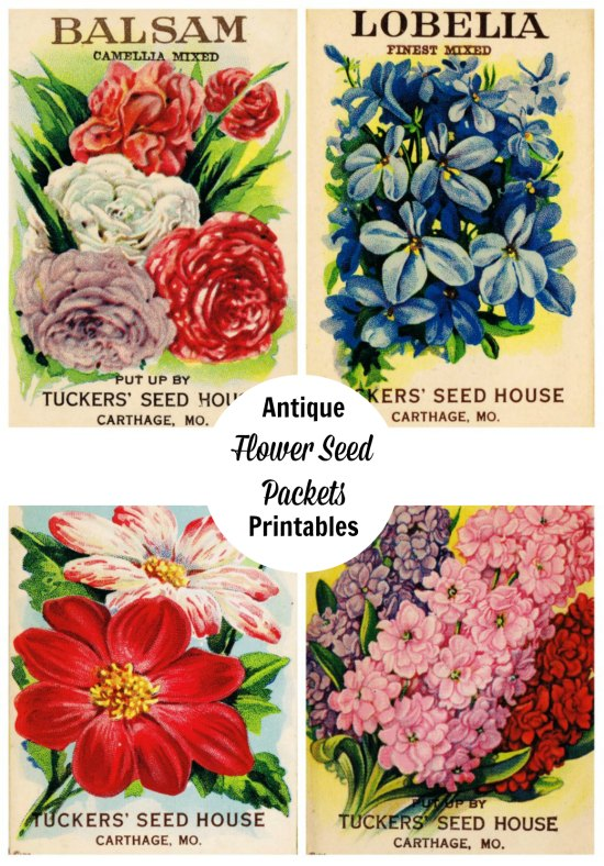 Free printable antique flower seed packages - KnickofTime.net