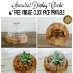 Cheese Dome Upcycle + Grade School Flashback