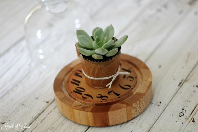 small succulents in cheese dome - KnickofTime.net