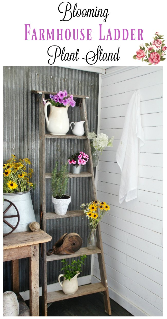 Turn a rustic old ladder into a farmhouse style plant style - KnickofTime.net