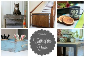 Talk of the Town #30 – Cat Condo, Barn Door Baby Gate + More