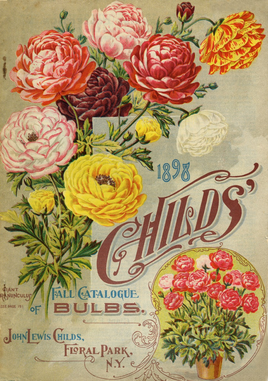 Antique seed catalog cover to print and frame or use on DIY repurposed flower bottles | www.knickoftime.net