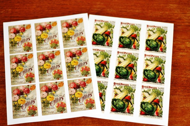 antique seed catalog covers for get well gift - www.knickoftime.net